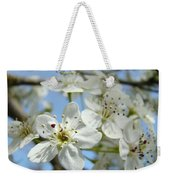 Blossoms Art Prints Whtie Spring Tree Blossoms Blue Sky Baslee Weekender Tote Bag