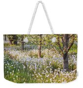 Blossoms Growing In A Fruit Orchard In Weekender Tote Bag