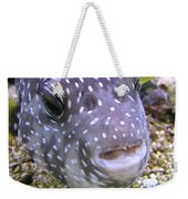 Blow Fish Close-up Weekender Tote Bag