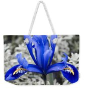 Blue Along Weekender Tote Bag