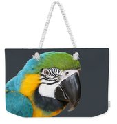 Blue And Gold Macaw Digital Freehand Painting Weekender Tote Bag