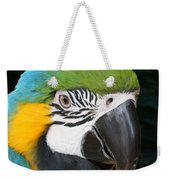 Blue And Gold Macaw Freehand Painting Square Format Weekender Tote Bag