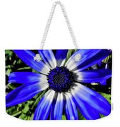Blue And White African Daisy Weekender Tote Bag