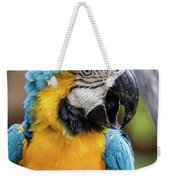 Blue And Yellow Macaw Vertical Weekender Tote Bag