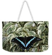 Blue-banded Swallowtail Butterfly Weekender Tote Bag