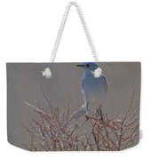 Blue Bird Colored Pencil Weekender Tote Bag