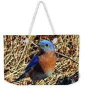 Blue Bird In The Grass Weekender Tote Bag