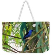 Blue Bird With A Curved Bill Weekender Tote Bag