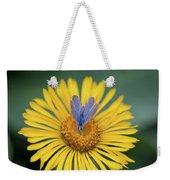 Blue Butterfly On Alpine Sunflower Weekender Tote Bag