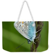 Blue Butterfly On Grass Weekender Tote Bag