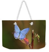 Blue Butterfly On Leaf Weekender Tote Bag
