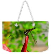 Blue Dasher Damselfly Weekender Tote Bag