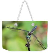Blue Dasher Dragonfly On A Branch Weekender Tote Bag