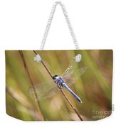 Blue Dragonfly Against Green Grass Weekender Tote Bag