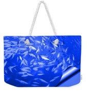 Blue Fish Abstract Weekender Tote Bag