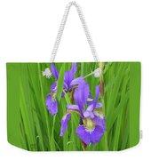 Blue Flag Iris-1  Weekender Tote Bag