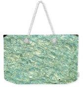 Blue Fossil Weekender Tote Bag