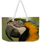 Blue Gold Macaw South America Weekender Tote Bag