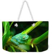 Blue-green Tropical Frog Weekender Tote Bag