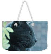 Blue Grey Contemplating Cat Weekender Tote Bag