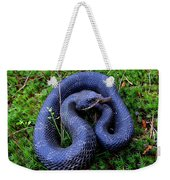 Blue Hognose Weekender Tote Bag