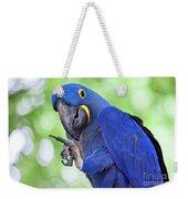 Blue Hyacinth Macaw Weekender Tote Bag