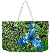 Blue Iris Hermodactyloides Weekender Tote Bag