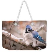 Blue Jay In Winter Weekender Tote Bag