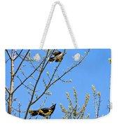 Blue Jay Mobbing A Crow Weekender Tote Bag