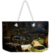 Blue Little Fish In Aquarium Weekender Tote Bag