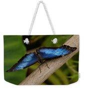 Blue Morpho Butterfly Weekender Tote Bag by Sandy Keeton