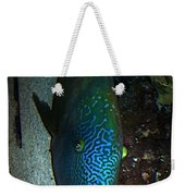 Blue Parrot Fish Weekender Tote Bag