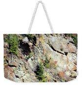 Blue Ridge Mountain Weekender Tote Bag