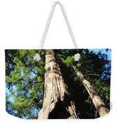 Blue Sky Big Redwood Trees Forest Art Prints Baslee Troutman Weekender Tote Bag