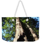 Blue Sky Big Redwood Trees Forest Art Prints Baslee Troutman Weekender Tote Bag