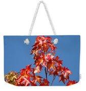 Blue Sky Fall Tree Leaves Landscape Art Prints Baslee Troutman Weekender Tote Bag