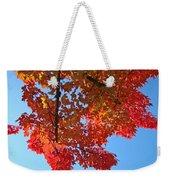 Blue Sky Red Autumn Leaves Sunlit Orange Baslee Troutman  Weekender Tote Bag