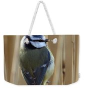 Blue Tit On Reed Weekender Tote Bag