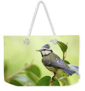 Blue Tit With Caterpillar Weekender Tote Bag