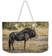 Blue Wildebeest Standing On Savannah Staring Ahead Weekender Tote Bag