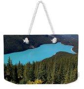 Blue Wolf In The Valley Weekender Tote Bag