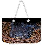 Bluebird Babies Dreaming Of Flight Weekender Tote Bag