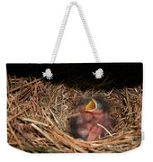 Bluebird Babies Weekender Tote Bag