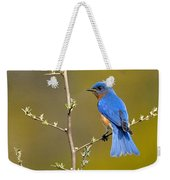 Bluebird Bliss Weekender Tote Bag