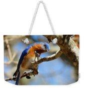 Bluebird Curiousity Weekender Tote Bag