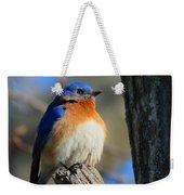 Bluebird Evening Weekender Tote Bag