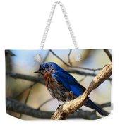 Bluebird In May Weekender Tote Bag