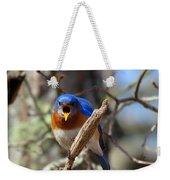 Bluebird Temper Weekender Tote Bag
