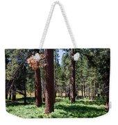 Bluff Lake Ca Fern Forest 2 Weekender Tote Bag