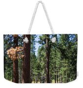 Bluff Lake Ca Fern Forest 3 Weekender Tote Bag